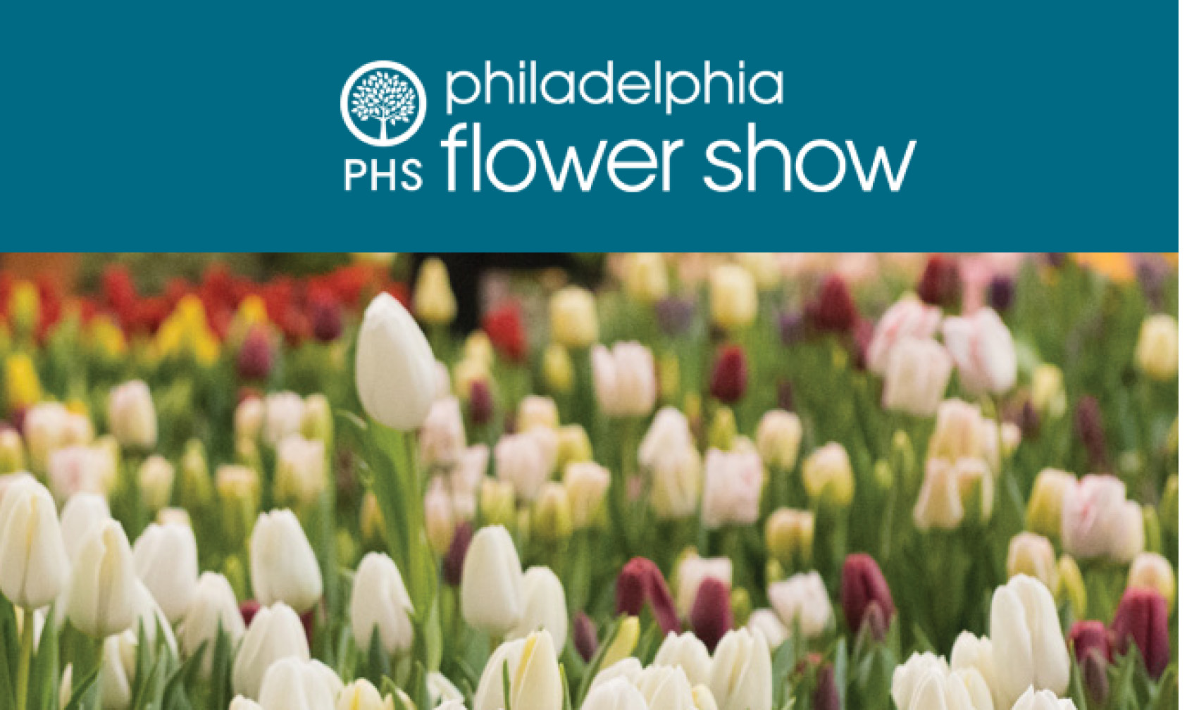 PA Dutch Country and Philadelphia Flower Show | March, 2018